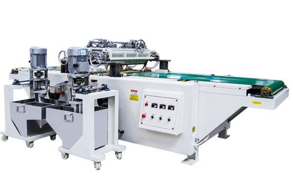 Two head curtain coater